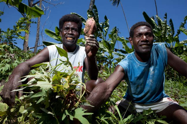 In the field of plenty (Tom Greenwood, OxfamNZ)