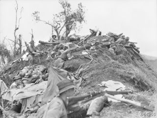Battle for Shaggy Ridge (Australian War Memorial)