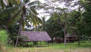 Madang village scene