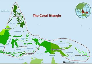 Coral-triangle-map