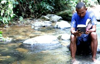 The reader (Highlands, PNG)