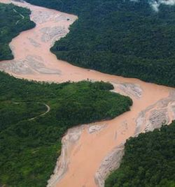 Mine tailings pollute the Fly River