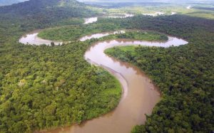 Frieda_river_near_sepik