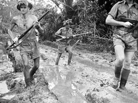 Australian troops at Milne Bay in 1942  shortly after the battle