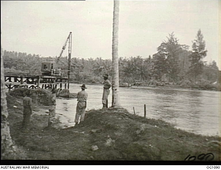 Constructing bridge across the Raihu (Australian War Memorial)