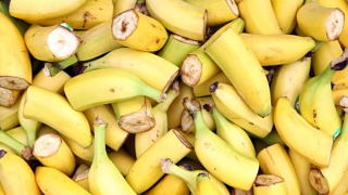 The imminent death of the Cavendish banana (BBC)