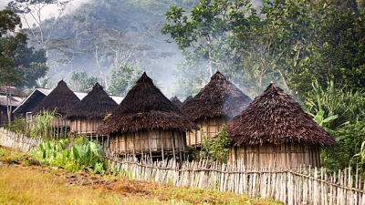 PNG traditional village