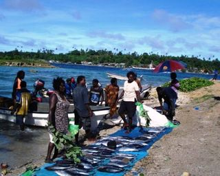 Scene in north Bougainville (Catherine Wilson – IPS)