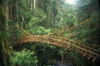 PNG highlands bridge