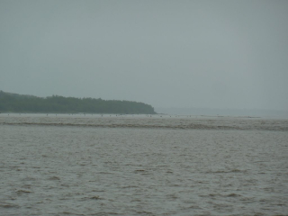 Bore Tide on Bamu River