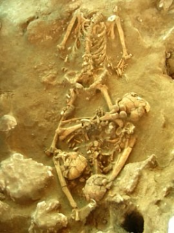 Ancient skeleton at the Teouma site on Efate (ANU)