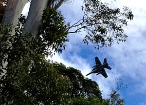 Anzac Day RAAF aircraft flyover at Springbrook