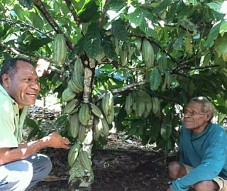 Dr John Konam with a cocoa farmer