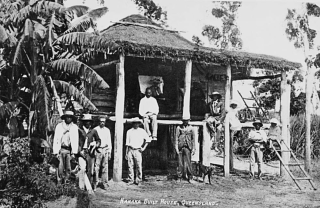 South Sea Islanders  Mackay  1907