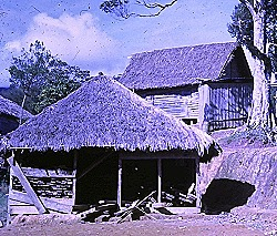 Roche - Timber Shed with Priest's House at rear. Karap 1971