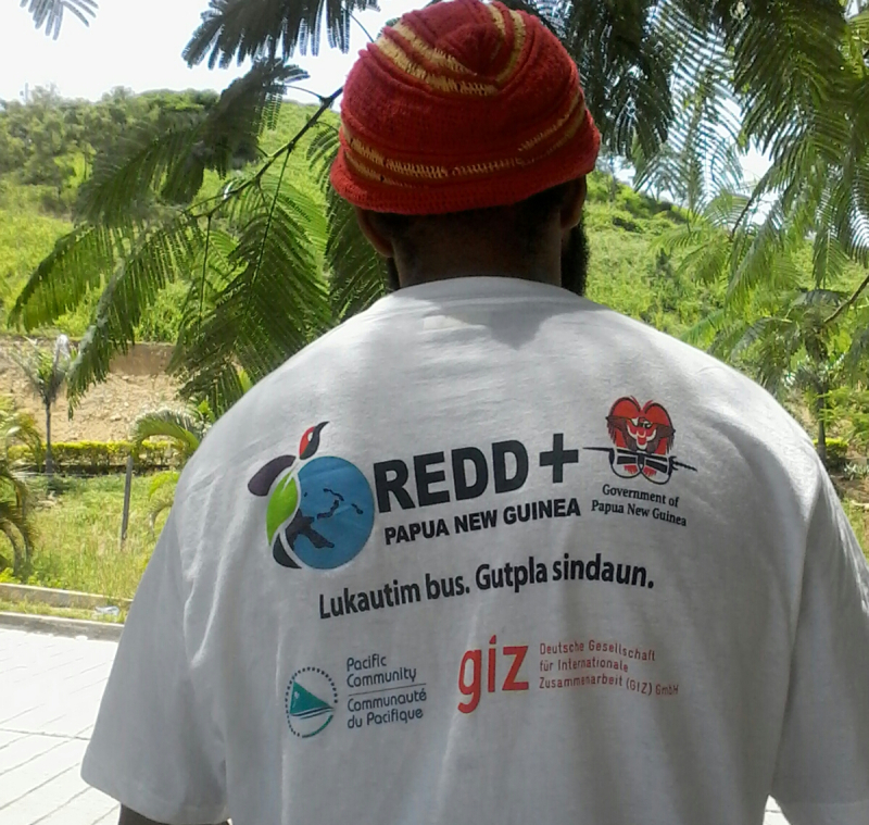 Kinjap - REDD+ indigenous community awareness materials distributed by CCDA. Picture by Peter Kinjap