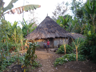 Enga-traditional-house