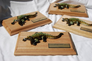 Crocodile-prize trophies