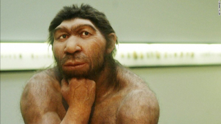 Neanderthals  Denisovans and our ancestors were mixing a long time ago