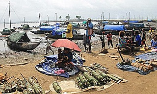 Boat harbour  Daru (The Guardian)