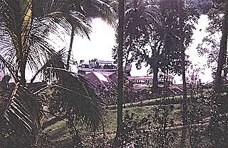 K Boat docking at Kikori  early 1971. It would unload in a couple of hours and go on its way back to Port Moresby or further west to Daru