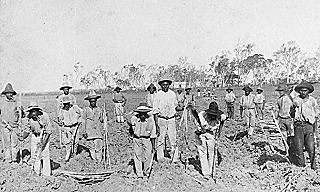 Pacific Islanders on a Queensland sugar plantation (State Library of Queensland)