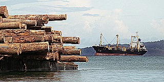 Ship-waiting-to-load-logs